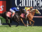 Mighty Boss winning the Ladbrokes Caulfield Guineas