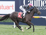Mr Sneaky was far from surreptitious first up at Caulfield