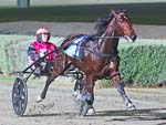 Poster Boy winning the BENSTUD STANDARDBREDS YOUTHFUL STAKES (2YO COLTS & GELDINGS)