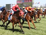 Redzel wins the Darley Classic