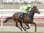 Royal Symphony wins impressively at Flemington
