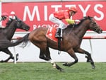Russian Revolution winning the McEwen Stakes