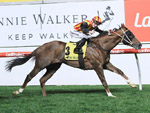 Showtime looks undervalued in early Lawrence betting