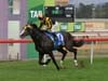Trapeze Artist wins the Black Opal