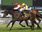 Washington Heights winning the Schweppes Shannon Stakes