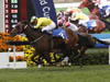 Werther (No. 3), ridden by Hugh Bowman and trained by John Moore to win the Citi Hong Kong Gold Cup
