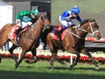 Winx keep Humidor at bay to land a third Cox Plate