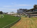 Racecourse : Warwick Farm (Australia)