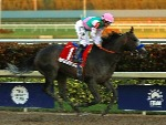 Arrogate wins the inaugural Pegasus World Cup