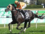 ACE HIGH winning the Yulong Australia Hill Stakes