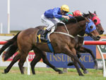 Amarula winning the L I Redshaw Memorial Hcp