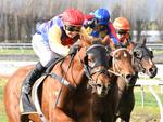 Atenartin winning the Ryder Stakes