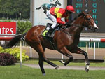 Be Bee winning the WAR AFFAIR 2014 STAKES KRANJI STAKES A