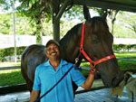 Clarton Super chills after a refreshing hose-down from his groom Ahmad Salleh following his barrier trial on Tuesday.