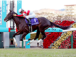 DANON PREMIUM winning the Asahi Hai Futurity Stakes in Hanshin, Japan.