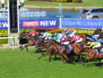 Coolmore Classic finish