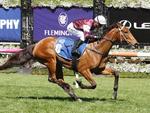 Eckstein winning the Paris Lane Stakes