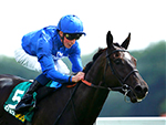 EMOTIONLESS winning the bet365 Stakes in Newbury, United Kingdom.