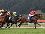 Ferrando winning the Te Akau Racing Lightning Hcp