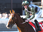 Kings Will Dream has had an ideal Caulfield Cup campaign