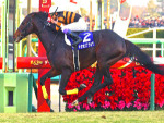KITASAN BLACK winning the Arima Kinen at Nakayama in Japan.