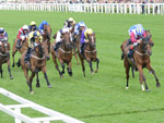 Lagostovegas winning the Ascot Stakes (Handicap)