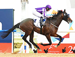 MENDELSSOHN winning the UAE Derby Race at Meydan in United Arab Emirates.