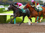 OMEGA PERFUME winning the Sirius Stakes at Hanshin in Japan.
