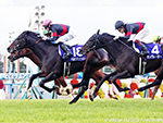 PERSIAN KNIGHT winning the Mile Championship Race in Kyoto, Japan.