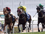 Pakistan Star (green cap) finishes a creditable fourth behind Time Warp (left) in the Citi Hong Kong Gold Cup last start.