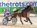 Tornado Valley winning the TAB INTER DOMINION TROTTING CHAMPIONSHIP (1ST ROUND QUALIFYING HEAT 1) (GROUP 3)