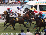 Ronnie Stewart at his first stint in 2012. He is on the leading horse, Umhlanga in the middle.