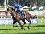 Winx winning the Longines Queen Elizabeth Stks