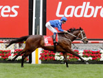 Winx returning after winning the Ladbrokes Cox Plate