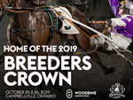 Breeders Crown - 2019