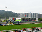 Racecourse : Sha Tin