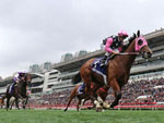 Beauty Generation winning the The Queen's Silver Jubilee Cup