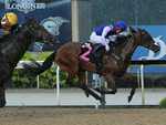 Biraz winning the KRANJI STAKES C