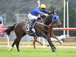 Cavallo Veloce winning the Sweynesse @ Karaka 2019 3yo