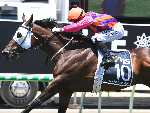 CHAPTER AND VERSE winning the Racing Qld $1m Magic Millions Open.