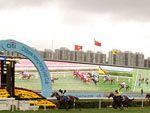 Exultant winning the The Citi Hong Kong Gold Cup