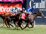 Lyre winning the Blue Diamond Stakes