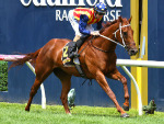 NATURE STRIP winning the Rubiton Stakes at Caulfield in Melbourne, Australia.