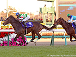 SATURNALIA winning the Hopeful Stakes in Nakayama, Japan.