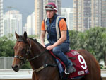 Paddy Bell with Viddora during trackwork at Sha Tin.