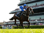 WINX winning the Longines Queen Elizabeth Stakes during The Championships Day 2 at Royal Randwick in Sydney, Australia.