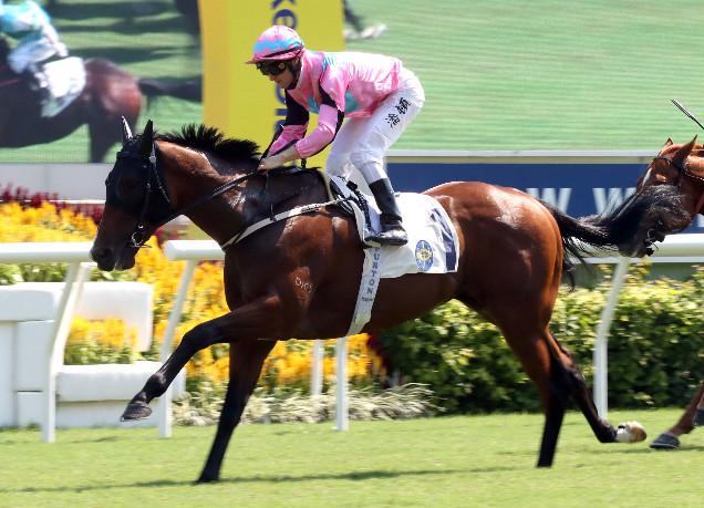 「百步穿雲」在香港勝出五場賽事。