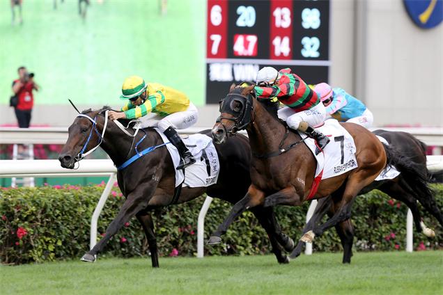 「達心星」(內)攻下寶馬香港打吡大賽