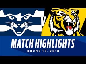 Geelong v Richmond Highlights