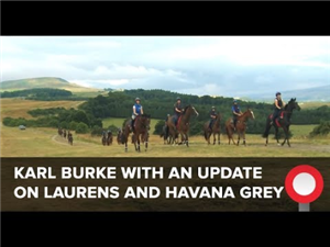 Karl Burke On Laurens And Havana Grey